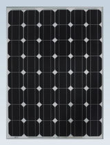 monocrystalline photovoltaic solar panel SF156×156-48-M Zhejiang Sunflower Light Energy Science & Technology Limited Liability Company