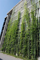 outdoor green wall  MMA Architectural Systems Ltd 