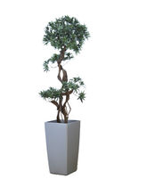 planter for public spaces PODOCARPUS ISKU