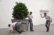 planter for public spaces THE FRAME Miramondo
