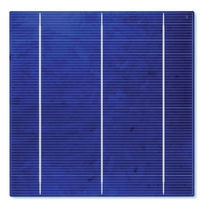 polycrystalline photovoltaic cell 156 (CA50-L) Sunways Photovoltaic Technology