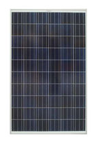 polycrystalline photovoltaic solar panel SUNPORT 60P 230W CUANTUM SOLAR SL