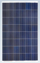 polycrystalline photovoltaic solar panel SF125×125-72-M Zhejiang Sunflower Light Energy Science & Technology Limited Liability Company