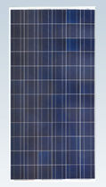 polycrystalline photovoltaic solar panel SF156×156-72-P Zhejiang Sunflower Light Energy Science & Technology Limited Liability Company
