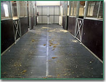 rubber flooring for stable EQUINE ALL PURPOSE MATS Flexitec