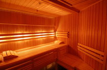 sauna  DYNAMIKA