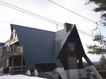 steel standing seam roofing sheet DUTCH SEAM ATAS International Inc.