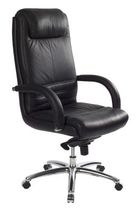 traditional executive leather armchair BRAZILIA Caray collectivites