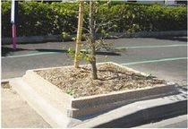 tree edging SOBÉRITE® 1 Sitinao