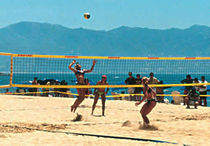 volleyball net 514-06-F3 Artimex Sport