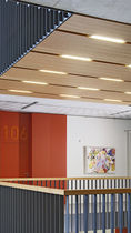 wood sound absorption panel DEWETON® TAVAPAN SA
