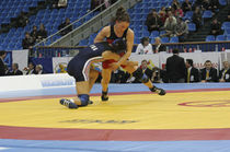 wrestling mat COMPETITION GYMNOVA