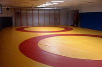 wrestling mat CLUB Modugame