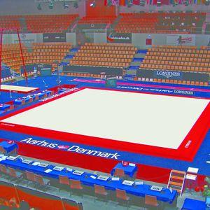 Gymnastics Exercise Floor