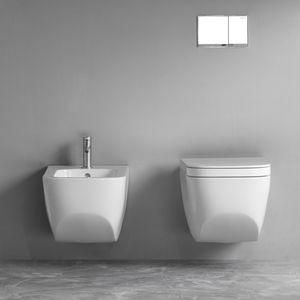 wallhung toilet ceramic rimless