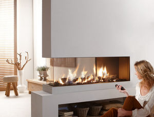 Gas Fireplace / Contemporary / Closed Hearth / 3 Sided