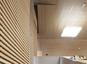 Wood Wall Cladding / Wooden / Interior / Sound Absorbing