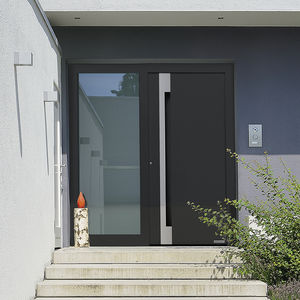 Entry Door / Swing / Aluminum / Burglar Proof
