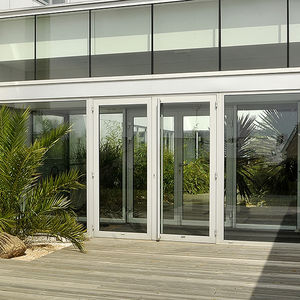 entry door / swing / pivoting / aluminum & Pivoting door - All architecture and design manufacturers - Videos pezcame.com
