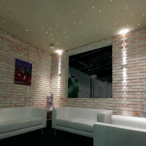 Contemporary Ceiling Light / Other Materials / Fiber Optic