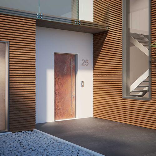 entry door / swing / steel / security