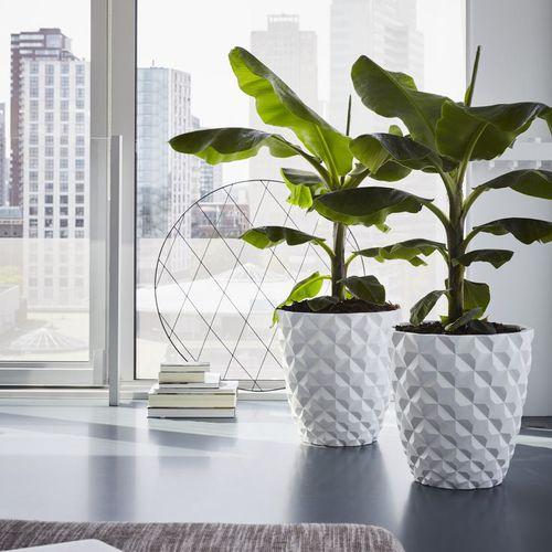 plastic garden pot / round