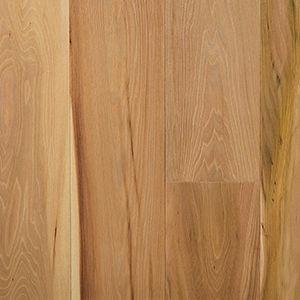 engineered parquet floor / glued / elm / natural oil