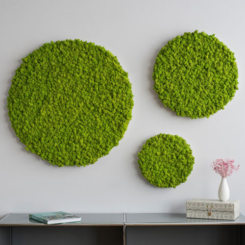 moss living frame / natural / indoor