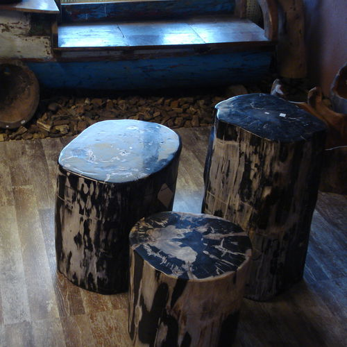 contemporary side table / petrified wood / square / circular