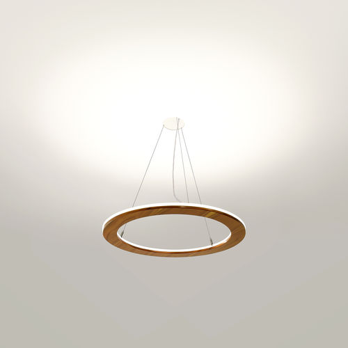 hanging light fixture / LED / curved / round