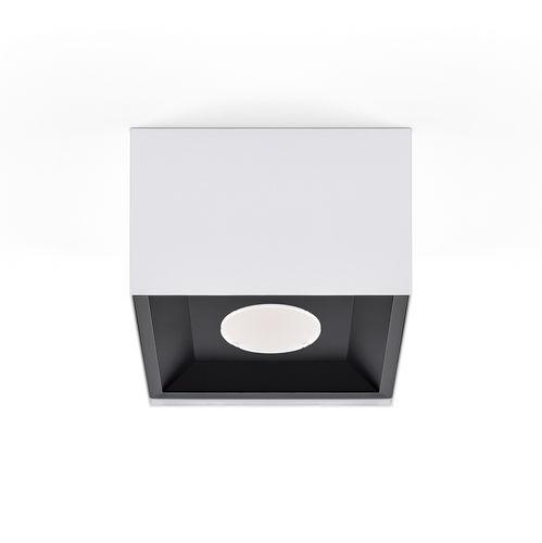 surface mounted downlight - INDELAGUE | ROXO Lighting