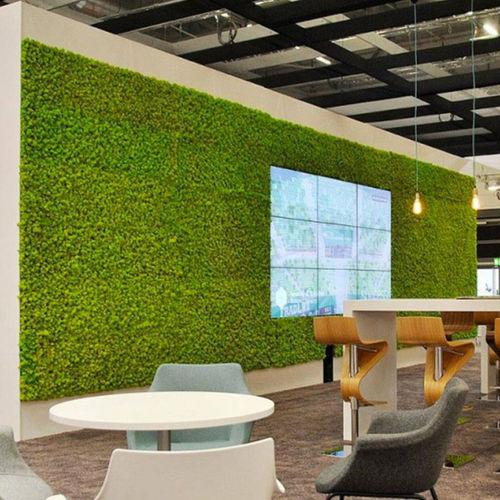 natural green wall / moss / indoor / modular