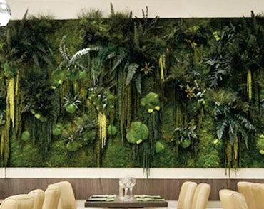 foliage green wall / moss / indoor / modular