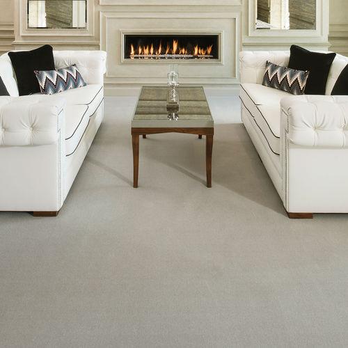 tufted carpet / nylon / wool / home