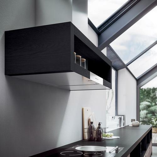 wall-mounted range hood / original design