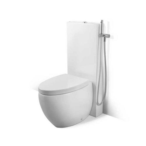 pneumatic toilet flush