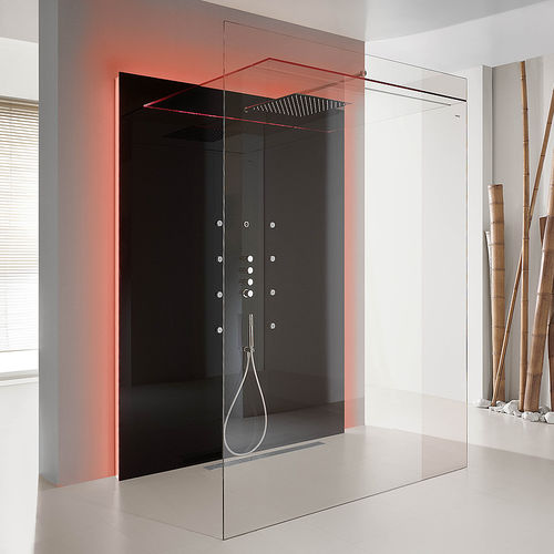 walk-in shower / glass / rectangular