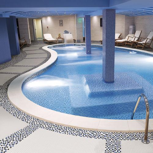 indoor mosaic tile / pool / poolside / floor