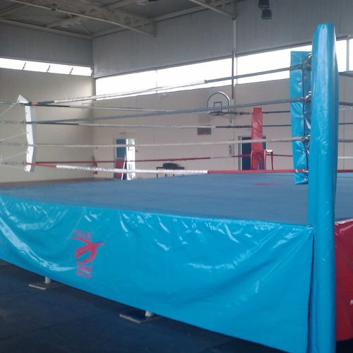 canvas sports flooring / PVC / for indoor use / for multipurpose gyms