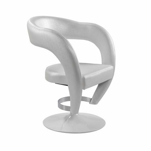 steel beauty salon chair / central base