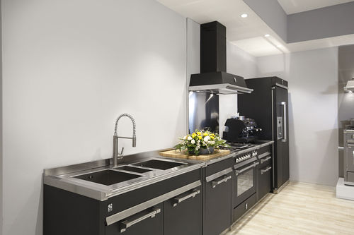 contemporary kitchen / stainless steel / steel / brushed stainless steel