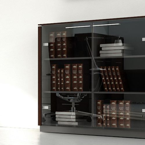 low filing cabinet / tall / contemporary