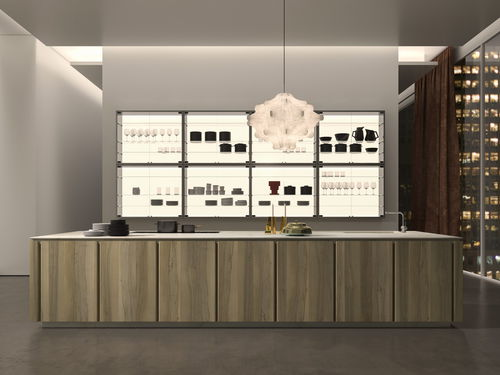contemporary kitchen / wooden / natural stone / quartz