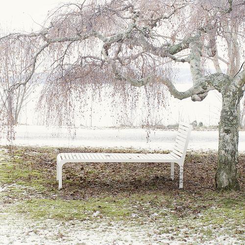 Scandinavian design sun lounger / wooden / for public spaces NF5003 Lappset