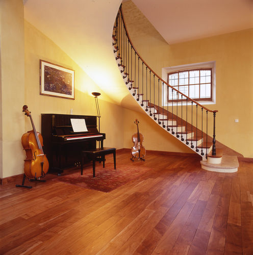 exotic wood parquet floor / solid / glued / floating