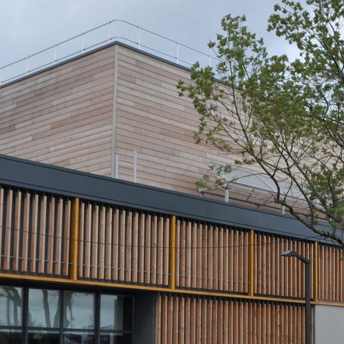 wooden cladding / grooved / strip / FSC-certified