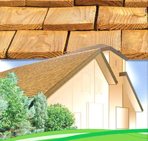 wood shingle / for roofs