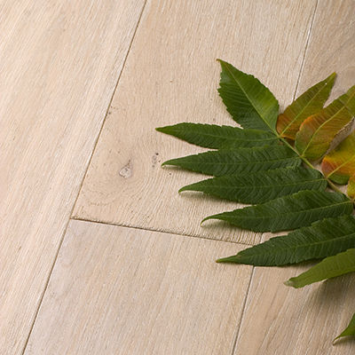 engineered parquet floor / solid / glued / oak