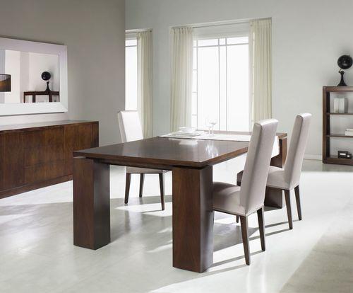 contemporary dining table / walnut / beech / rectangular