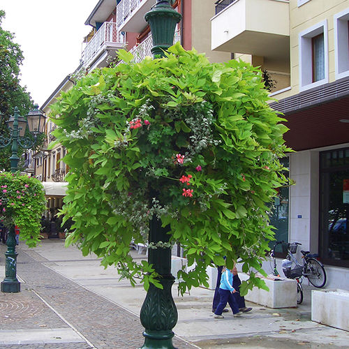 public space hanging planter stand